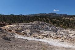 Terraced Hill at Mammoth Hot Springs