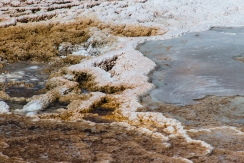 Close up of Mammoth Hot Springs Hill