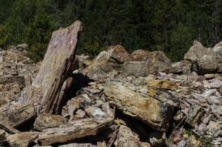 Gros Ventre Slide Debris