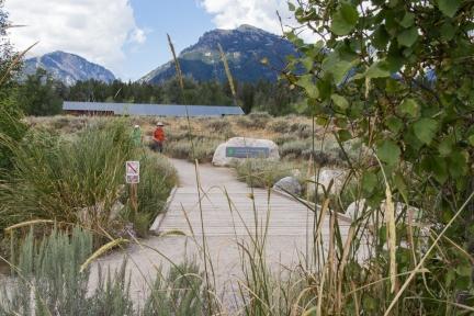 LS Rockefeller Preserve Trail