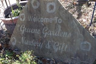 Gruene Garden Nursery & Figt