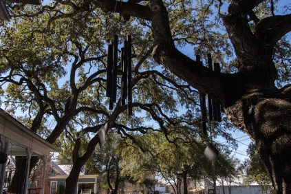 Wind Chime Tree