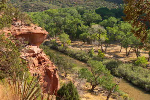 Trees, canyon cliffs, and Virgin River