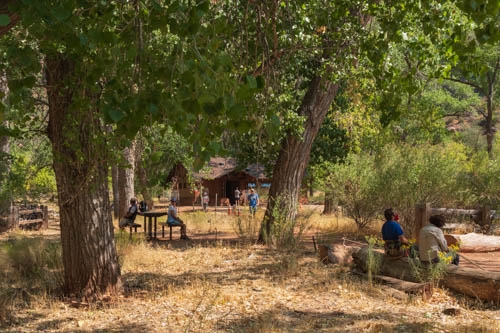 Trees, grass, picnic tables, and building