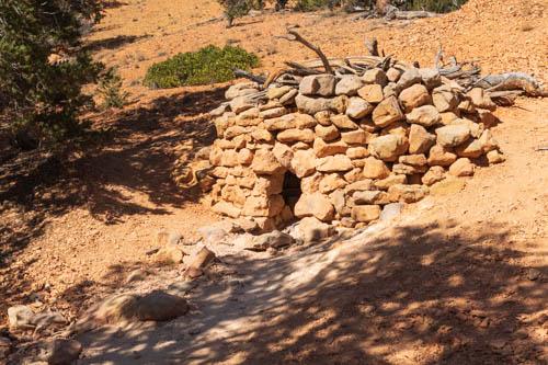 Rocks and tree limbs form a cache