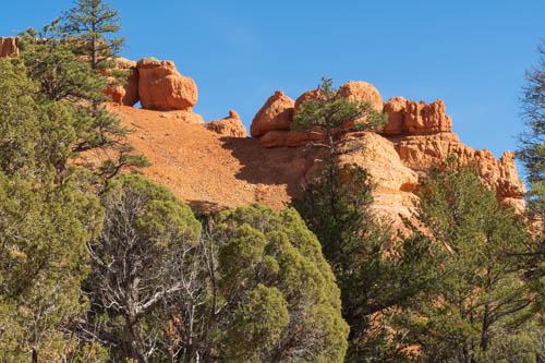Pine trees, rock formations, and blue sky