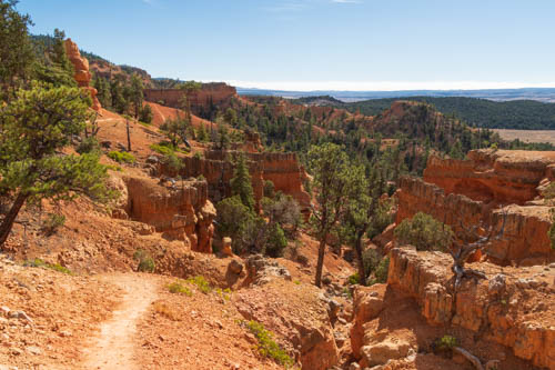 Red rock formations, trail, pine trees, and landscape view in background