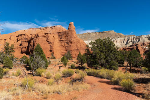 Trail, red rock and tan and white rock formations, and shrubs