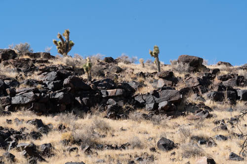 Lava rock hill covered with dry grass and yucca plants