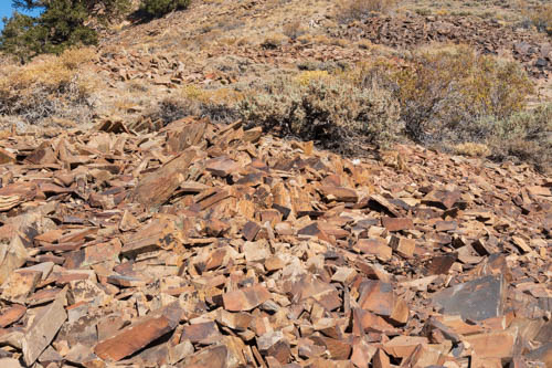 Talus slope of red quartzite