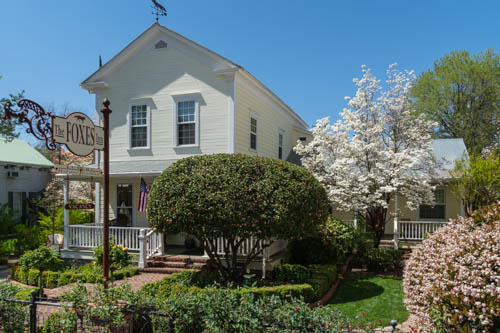 Yellow 1800s style home amid flowering trees and bushes